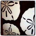 Custom Artwork Sand Dollar